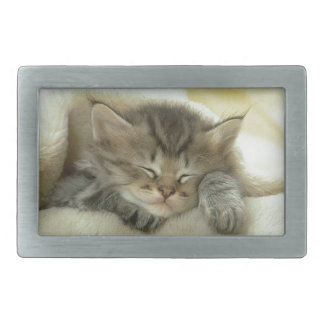 Sleepy Nap Time Kitten Rectangular Belt Buckle