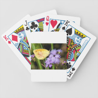 Sleepy Orange Butterfly on Ageratum Wildflowers Bicycle Playing Cards