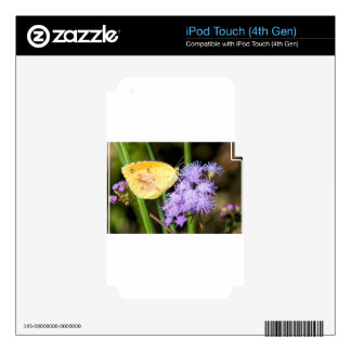 Sleepy Orange Butterfly on Ageratum Wildflowers iPod Touch 4G Decals