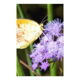 Sleepy Orange Butterfly on Ageratum Wildflowers Stationery