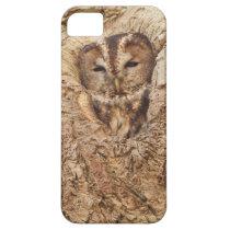 Sleepy Owl Collection iPhone SE/5/5s Case