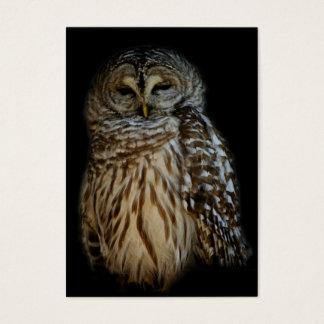 Sleepy Owl Mini Print Business Card