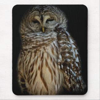 Sleepy Owl Mousepad
