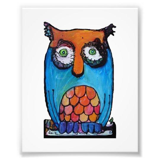 Sleepy Owl Photo Print