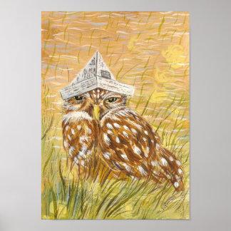 Sleepy Owl Posters