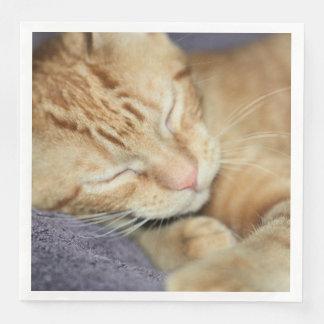Sleepy Paper Dinner Napkin