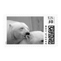 Sleepy Polar Bear Friends Stamp