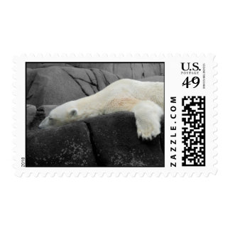 Sleepy Polar Bear Postage Stamp