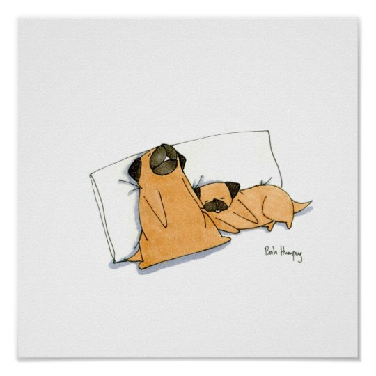 Sleepy Pugs Poster