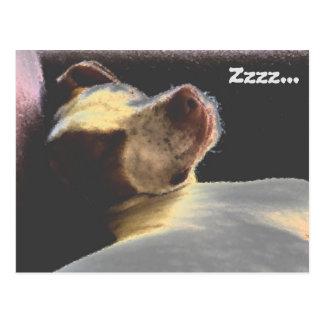 Sleepy Puppy Postcard