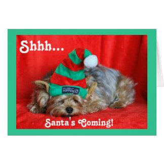 Sleepy Puppy Wearing Elf Hat Card