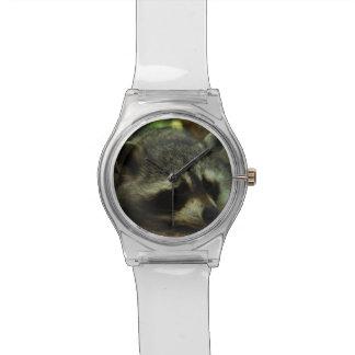 Sleepy Raccoon - Wildlife Photography Animals Wrist Watch