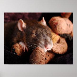 Sleepy Rat Print