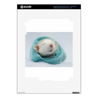 Sleepy Rat Skin For iPad 3