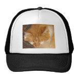 Sleepy Red Cat is finally REALLY sleeping Hat