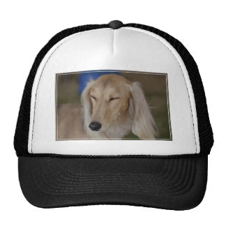 Sleepy Saluki Dog Trucker Hat