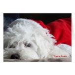 Sleepy Santa Cards