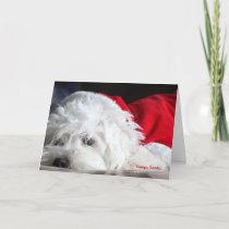 Sleepy Santa Holiday Card