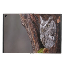 Sleepy Screech Owl iPad Air Cover