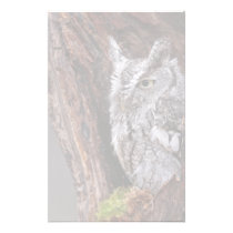 Sleepy Screech Owl Stationery