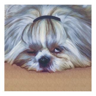 Sleepy Shih Tzu Dog Panel Wall Art