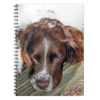 SLEEPY SPANIEL notebook