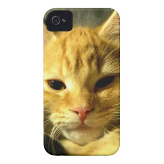 Sleepy Spud iPhone 4 Case