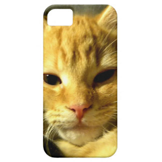 Sleepy Spud iPhone SE/5/5s Case