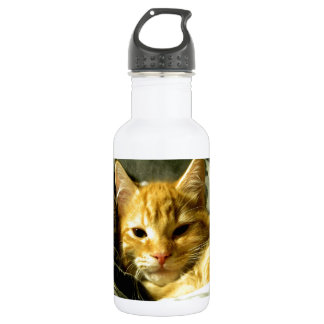 Sleepy Spud Water Bottle