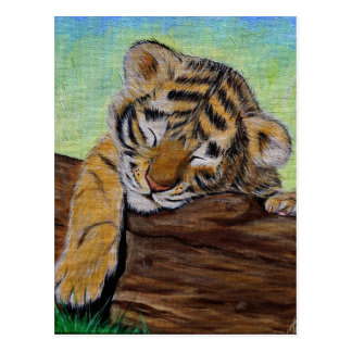 Sleepy Tiger cub Postcard