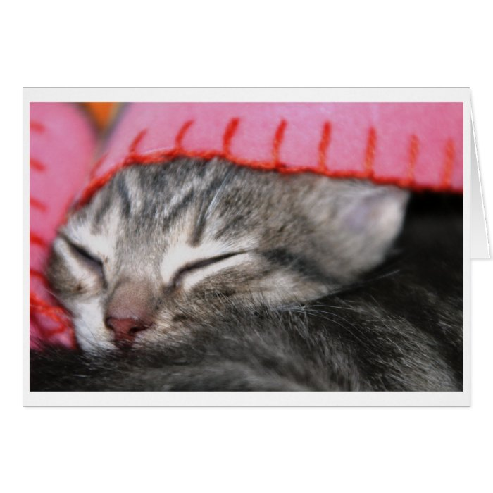 Sleepy time card