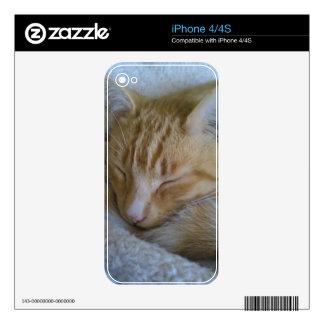 Sleepy Time Cat iPhone 4 Skins