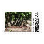 Sleepy time postage stamp