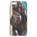 Sleepy Turtle iPhone 5C Case