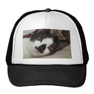 Sleepy Tuxedo Cat Trucker Hat