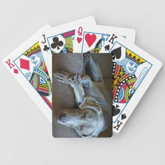 Sleepy Weimaraner Bicycle Playing Cards