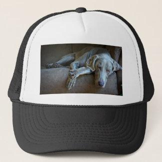 Sleepy Weimaraner Trucker Hat