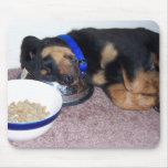 sleepyhead rottweiler. mouse pads