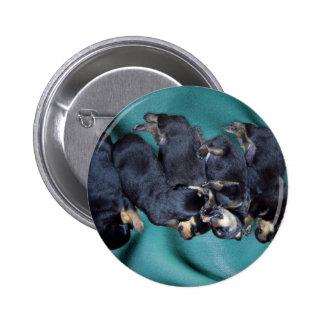 sleepyhead rottweiler puppies pinback button