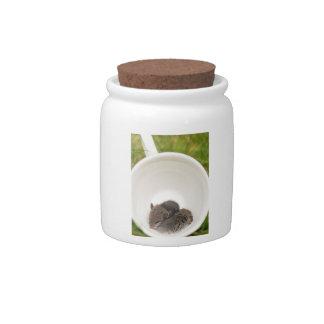 Sleepytime Baby Mice in Teacup Candy Jars