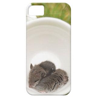Sleepytime Cute Baby Mice iPhone SE/5/5s Case