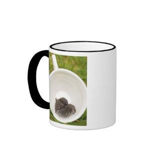 Sleepytime Cute Baby Mice Ringer Mug