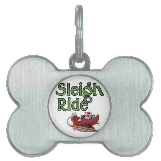 Sleigh Ride Pet Name Tag