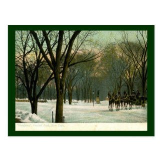Sleighing in Central Park, New York City 1914 Vint Postcard