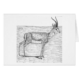 Slender Horned Gazelle Greeting Card