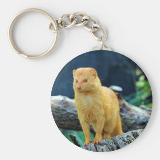 Slender Mongoose Galerella Sanguinea Basic Round Button Keychain