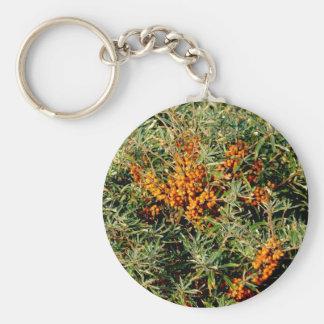 sleutelhanger del duindoorn llaveros personalizados
