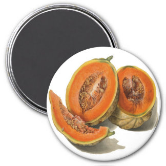 Sliced cantaloupe melon illustration 3 inch round magnet
