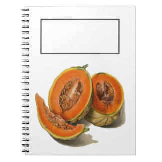 Sliced cantaloupe melon illustration book