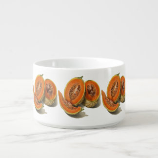 Sliced cantaloupe melon illustration bowl